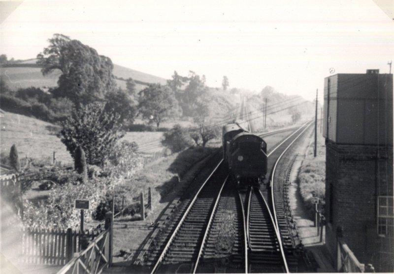 Littleham, Budleigh and beyond   Avocet Line